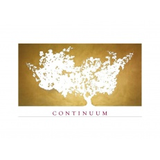 Continuum Estate